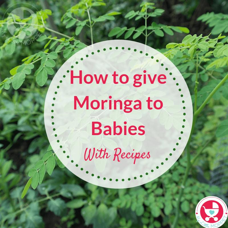 How To Give Moringa Leaves To Babies Moringa Leaves Moringa Recipes Moringa