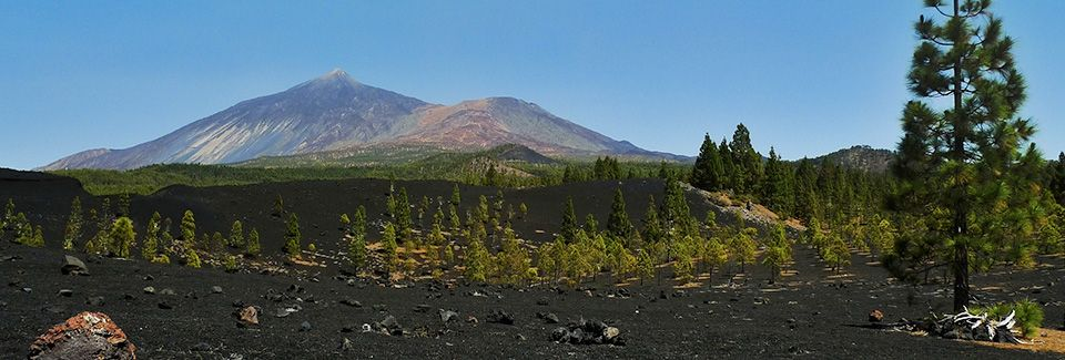 Best Places to Visit in Tenerife
