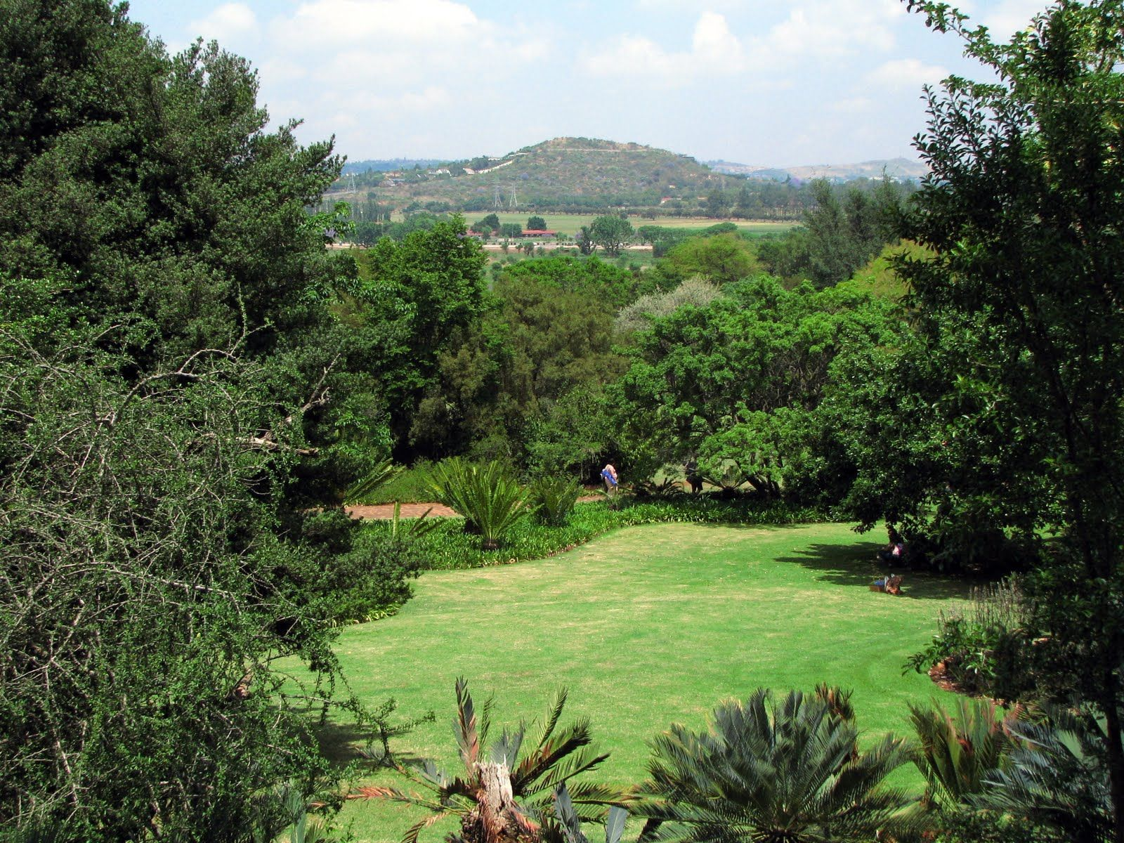The Pretoria Botanical Garden South Africa Travel Africa Travel Beaches In The World