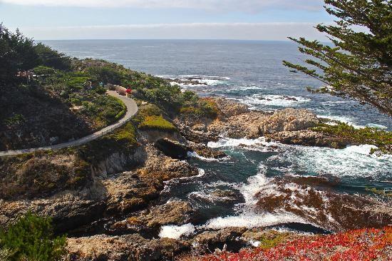 Californië: Overwhelming...Paradise in California!