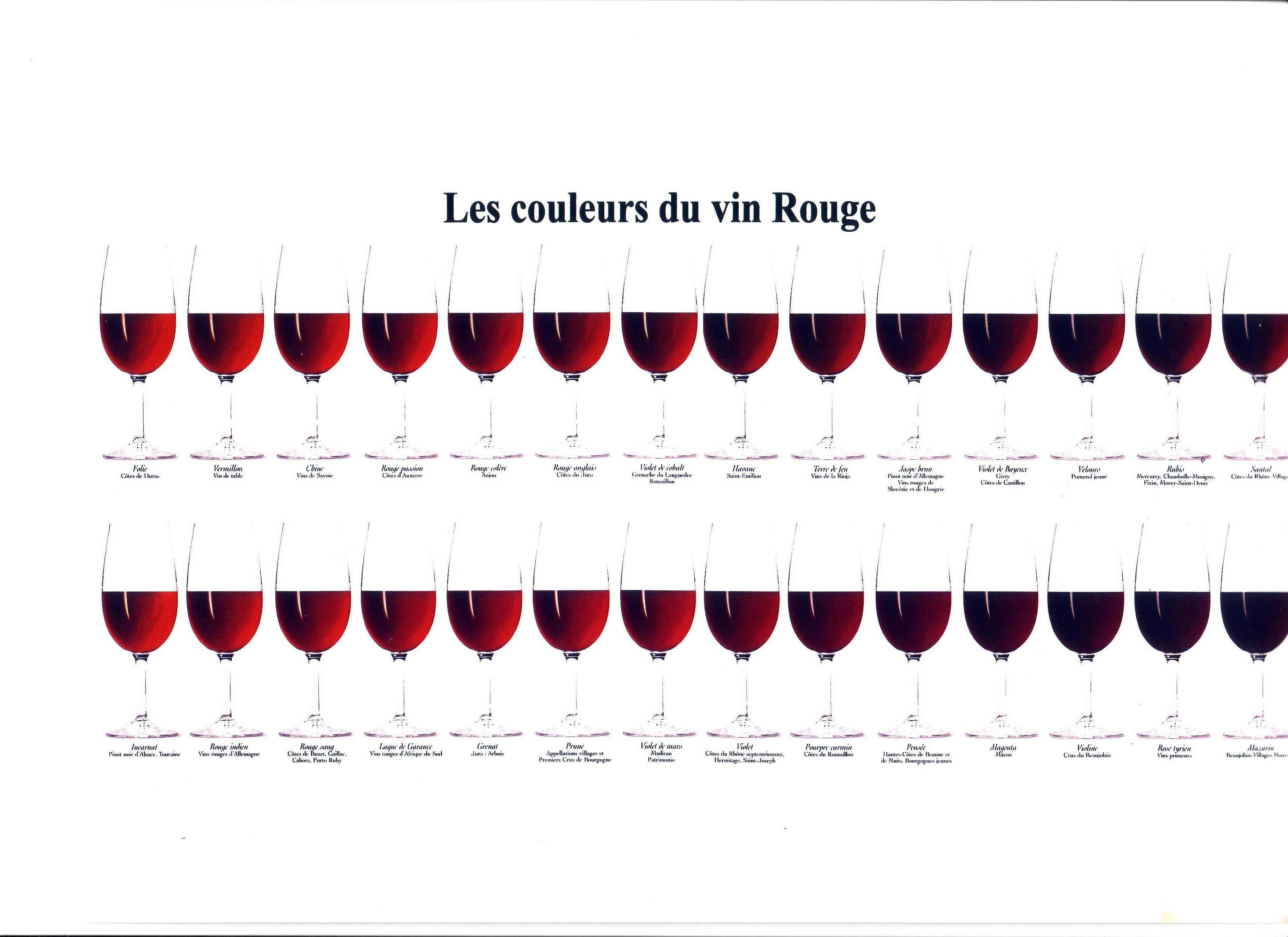 les couleurs du vin rouge infographics pinterest wine red wines and wine facts. Black Bedroom Furniture Sets. Home Design Ideas