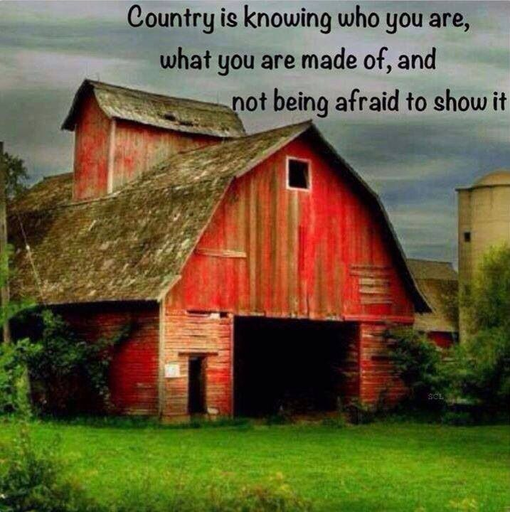 It's who I am and will always be! Proud country girl!!! #Murica #AgLife #NothinBetterThanThis!
