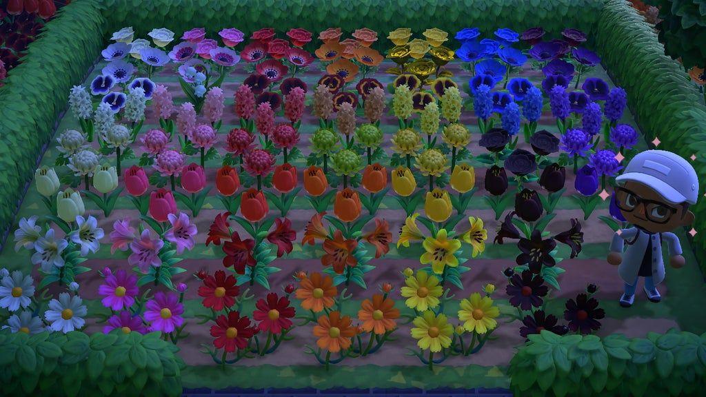 10+ Crossbreed flowers animal crossing ideas in 2021
