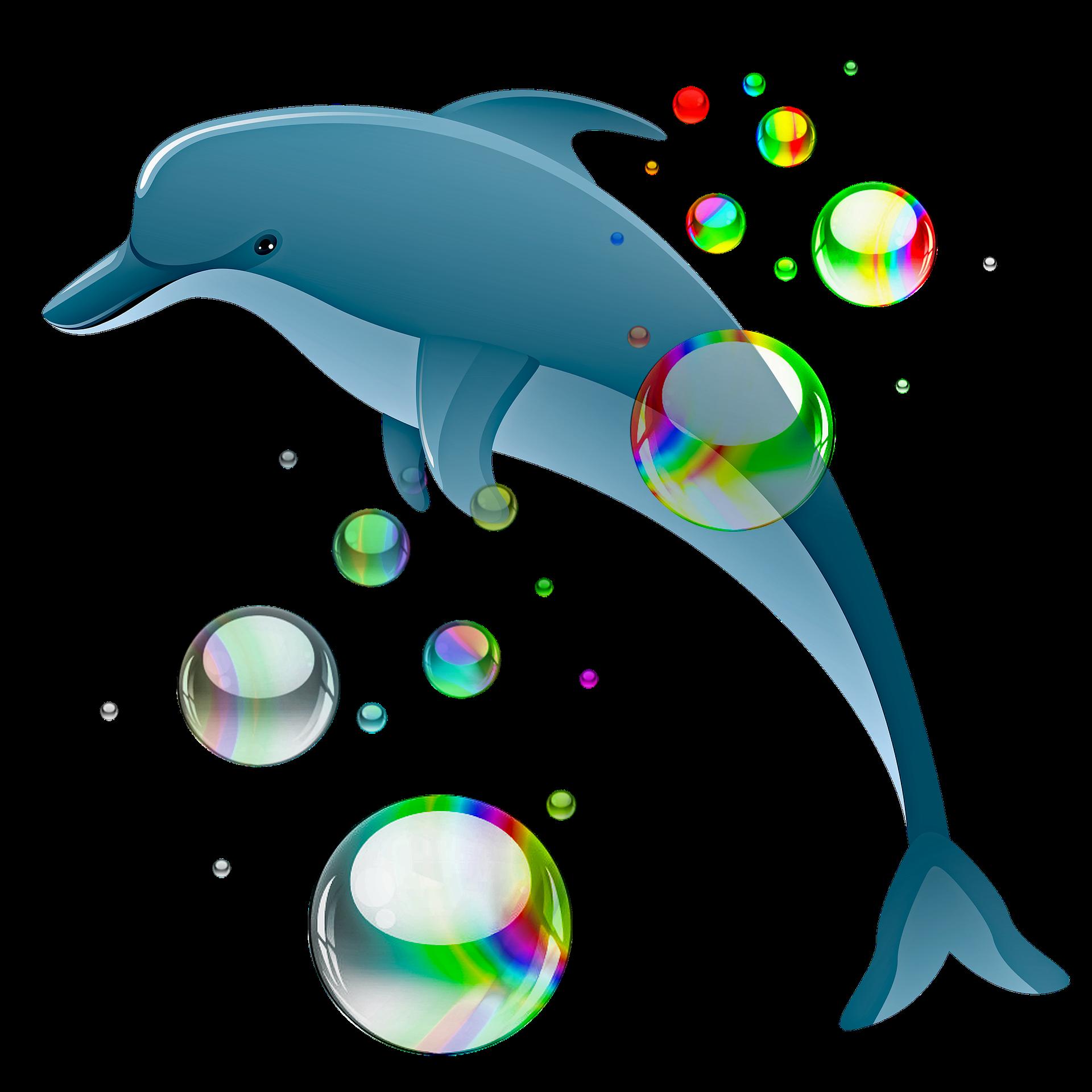 Dolphin Shirt In