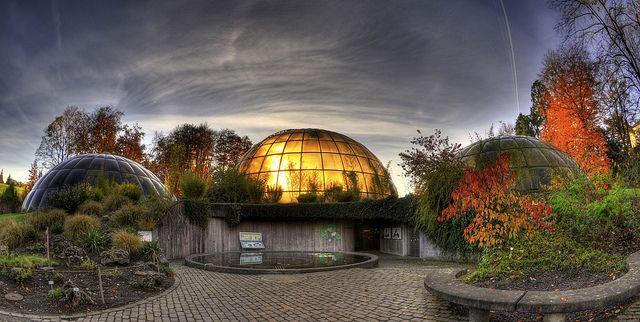 Greenhouse Domes,Zurich Botanical Gardens, Botanischer Garten Zürich by Exotic-ch, via Flickr