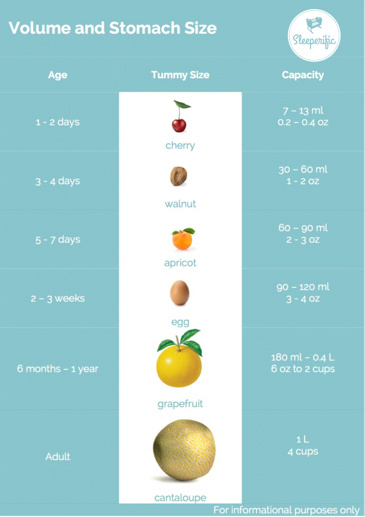 Stomach Size Infancy And Beyond Baby Pinterest Infancy