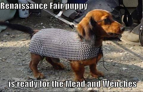 Bring Your Pets And Be Apart Of Our Pet Costume Contest Dachshund Wiener Dog Weenie Dogs