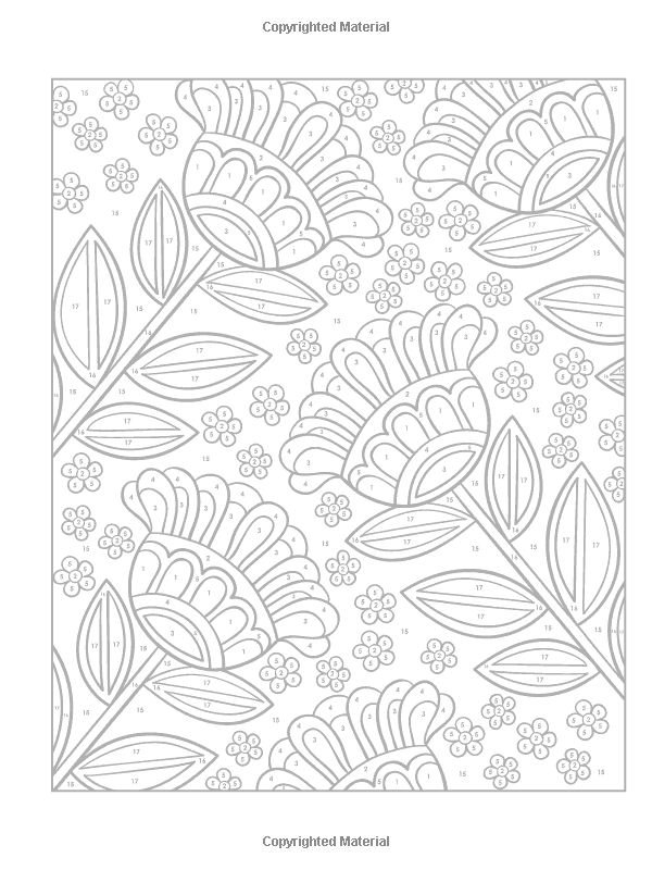 Creative Haven Floral Designs Paint by Number Adult Coloring
