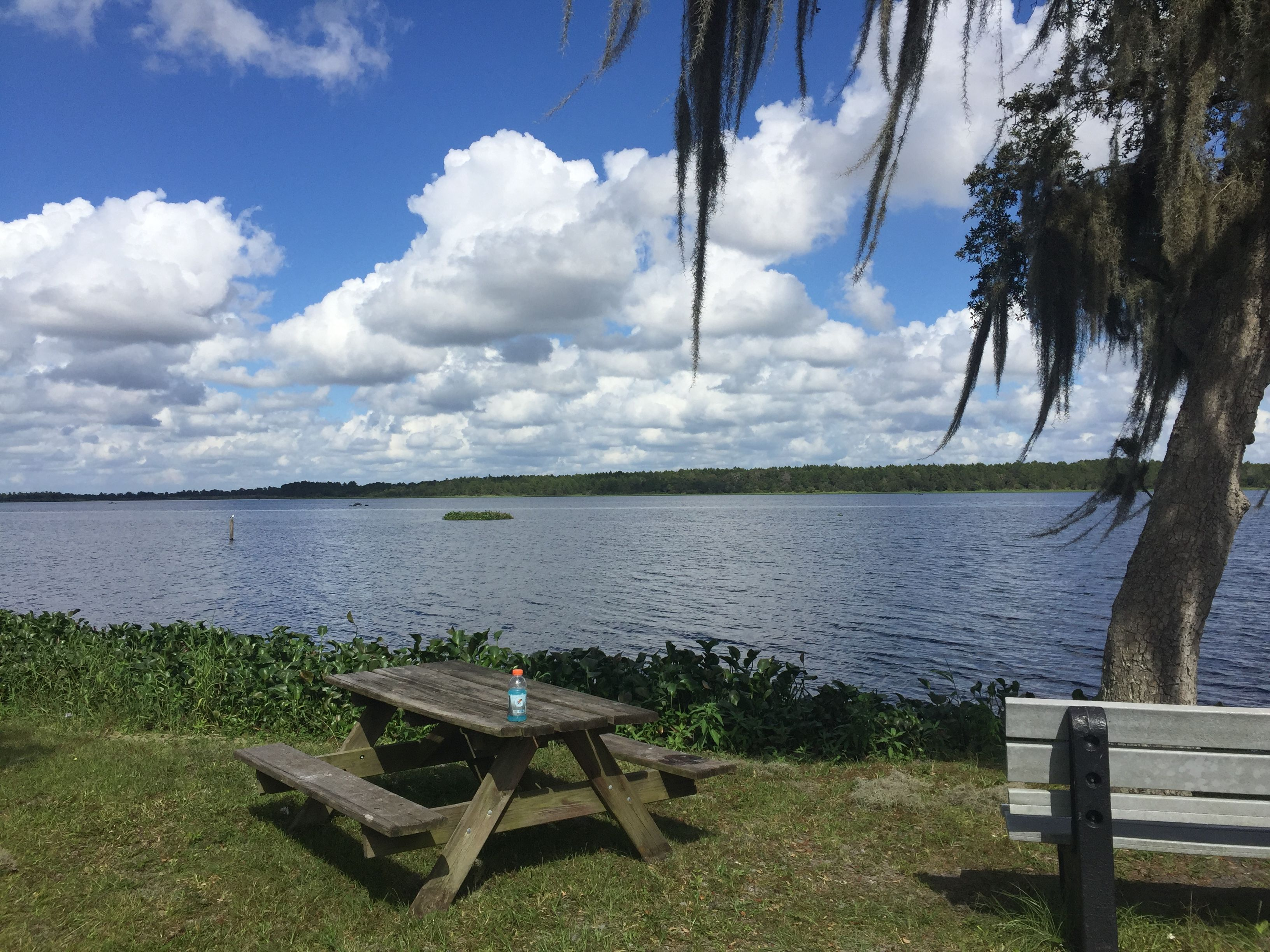 Lake Manatee State Park State Park Camping State Parks Camping World