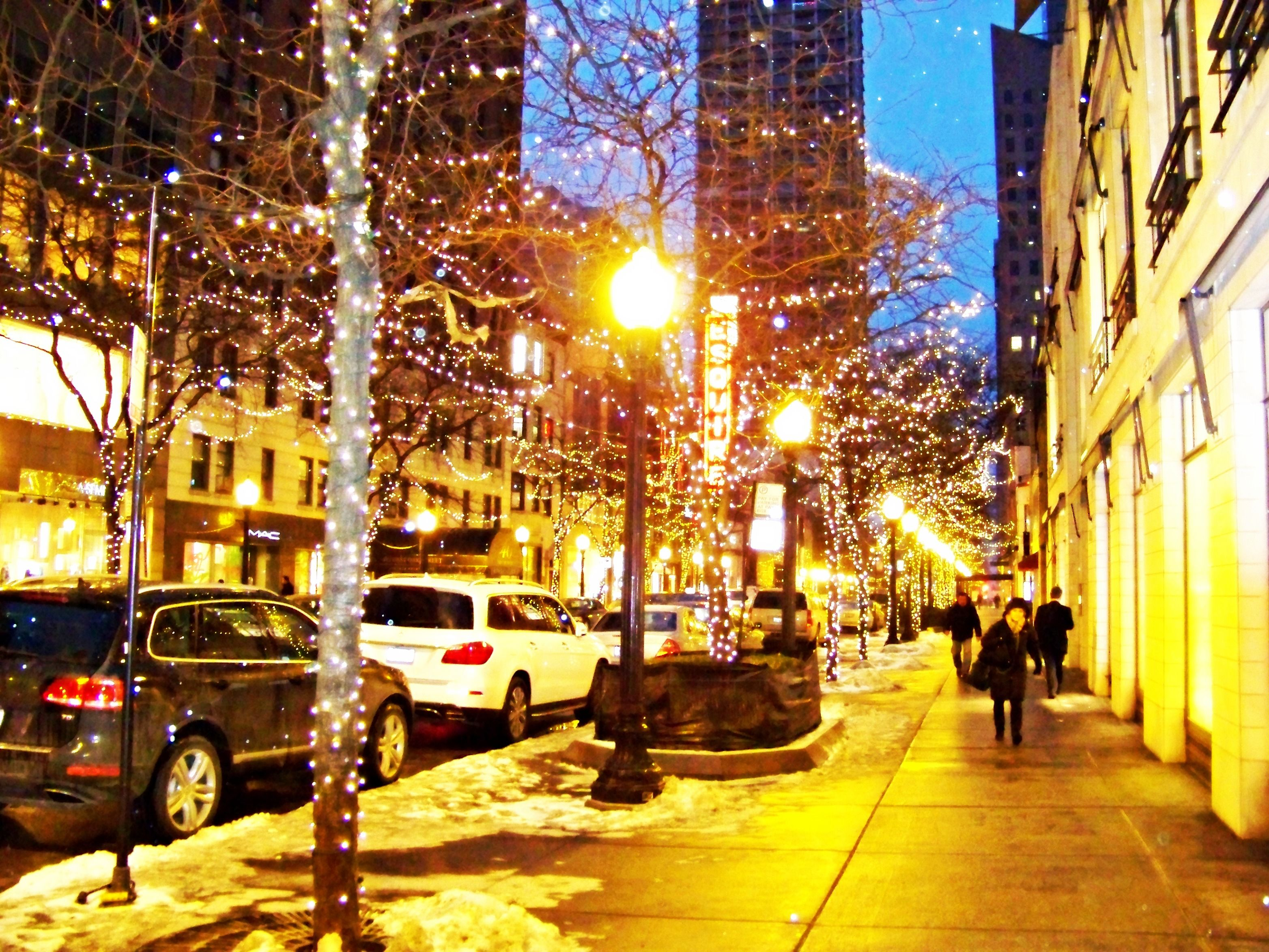 Dusable City In Winter Chicago Downtown Chicago Winter Downtown Chicago Photo