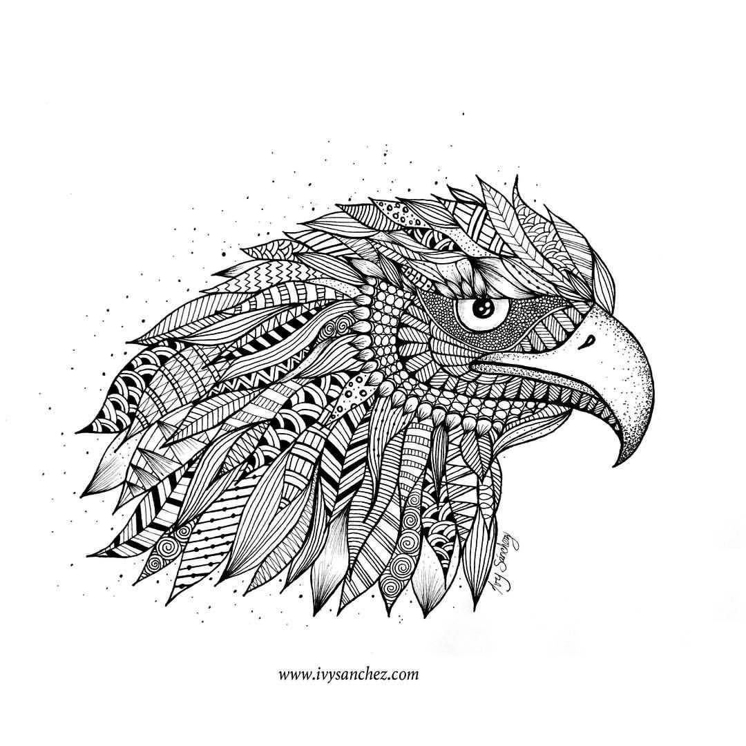 Golden Eagle North America S Largest Bird Of Prey And The National Bird Of Mexico Largest Bird Of Prey Mandala Eagle Golden Eagle