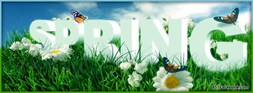 Spring Flowers Facebook Covers | Spring Flowers Facebook Cover ...