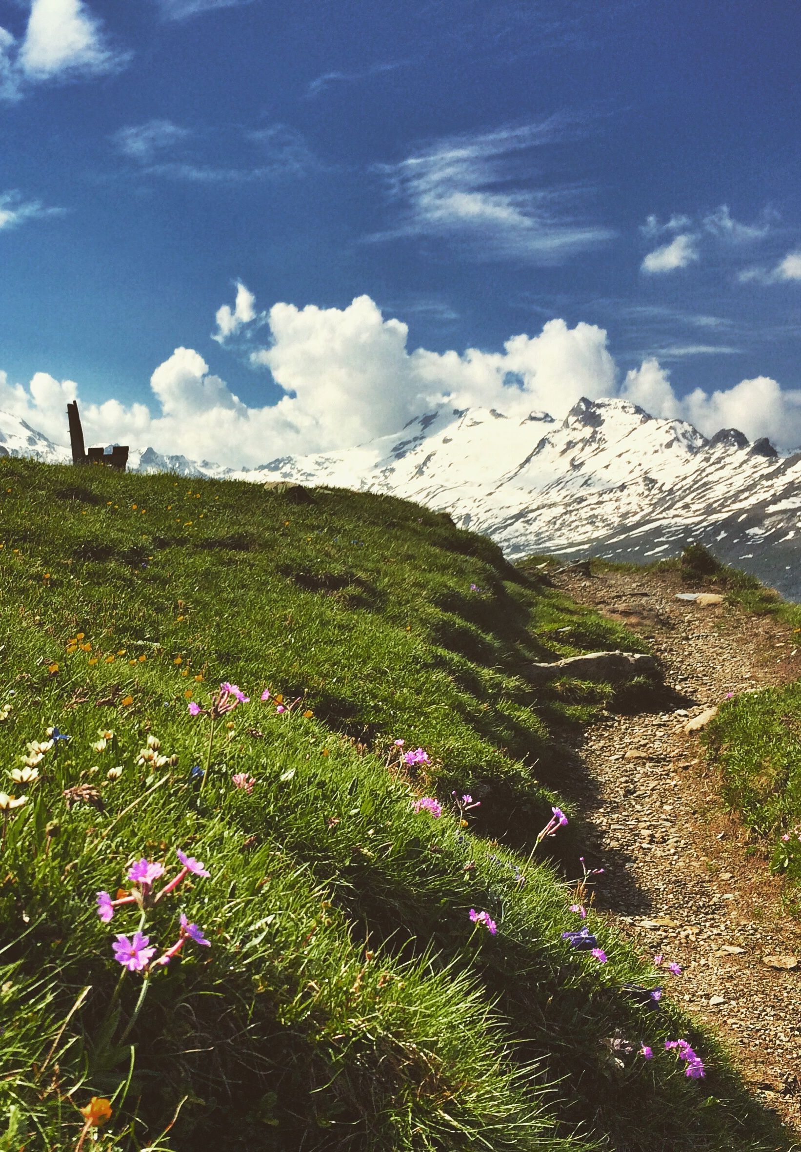 A perfect place to rest on a hike in the Idyllic Fextal in the Engadin Valley Switzerland  #mountains#hike#nature#sun