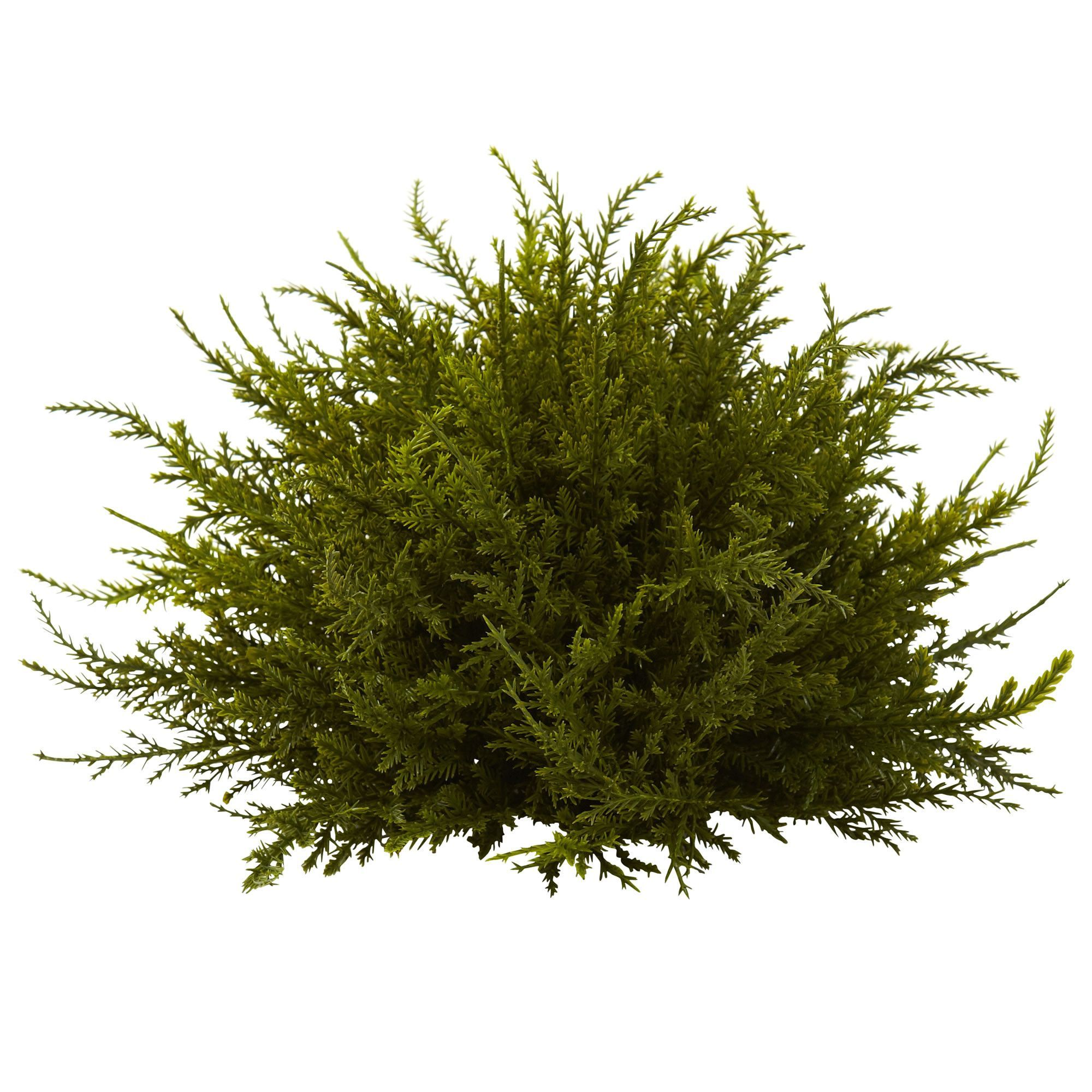 Features:  -Beautifully intricate in look.  -Perfect decor for any space.  -Ideal size for accenting.  Product Type: -Topiary.  Plant Type: -Cedar.  Orientation: -Floor.  Plant Material: -Plastic.  Pl