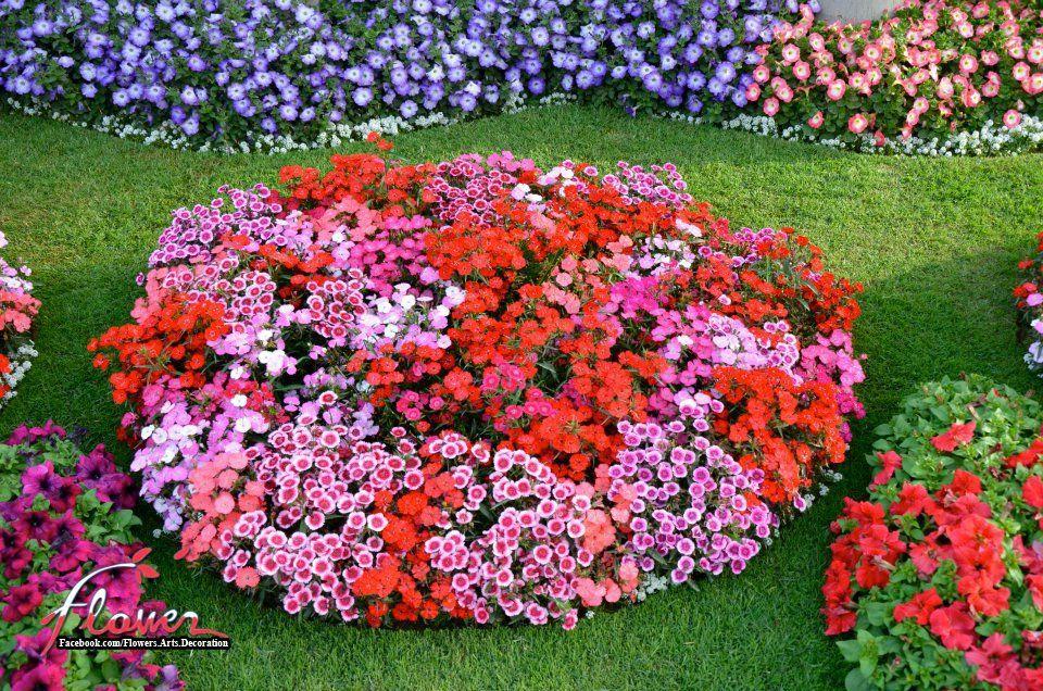 Flowers & Arts & Decoration