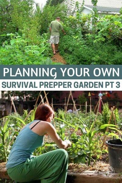 Planning Your Own Survival Prepper Garden Pt 3 | garden | Pinterest ...