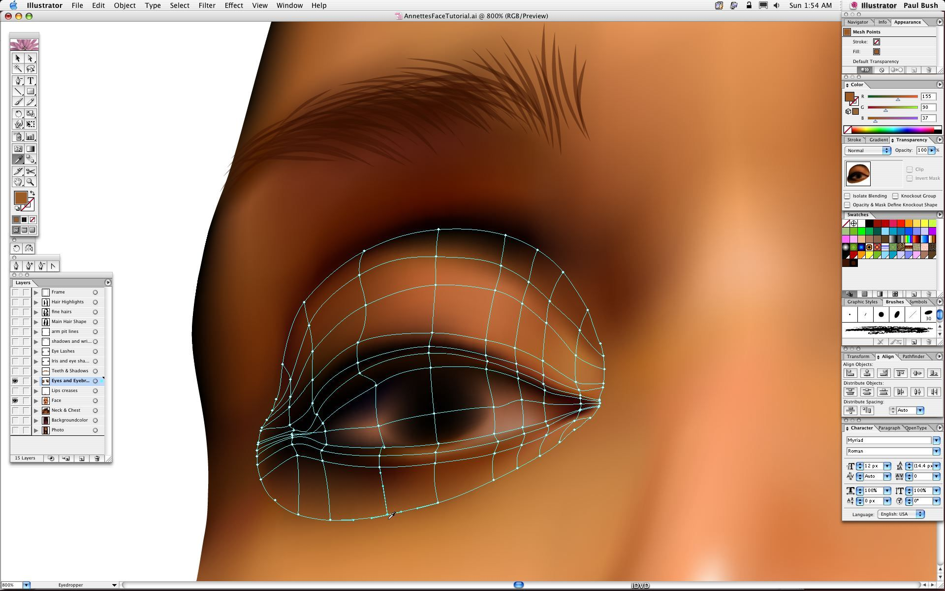 Adobe Illustrator Gra Nt Mesh Portrait Tutorial