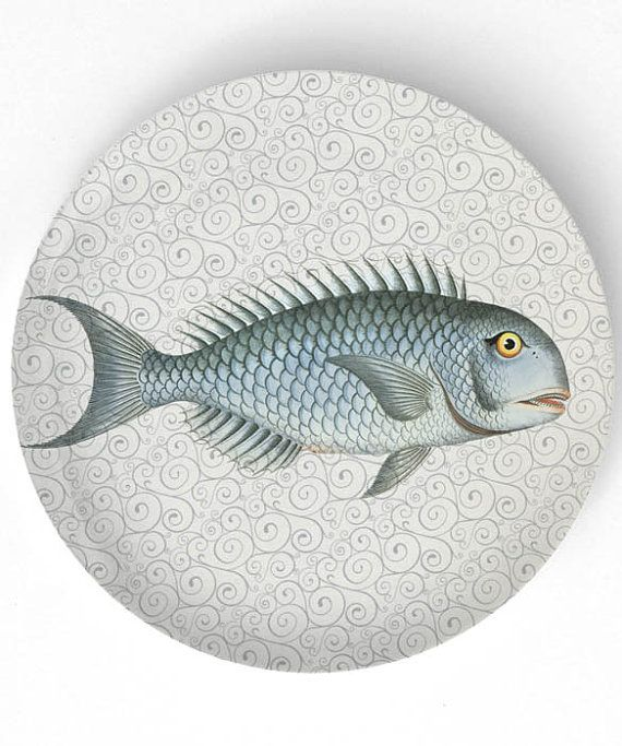 Sea Life Fish I 1800s Fish Artwork 10 Inch By