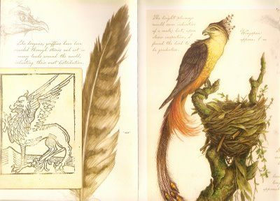 Griffin from Arthur Spiderwick's Field Guide to the Fantastical World Around You by Tony DiTerlizzi and Holly Black
