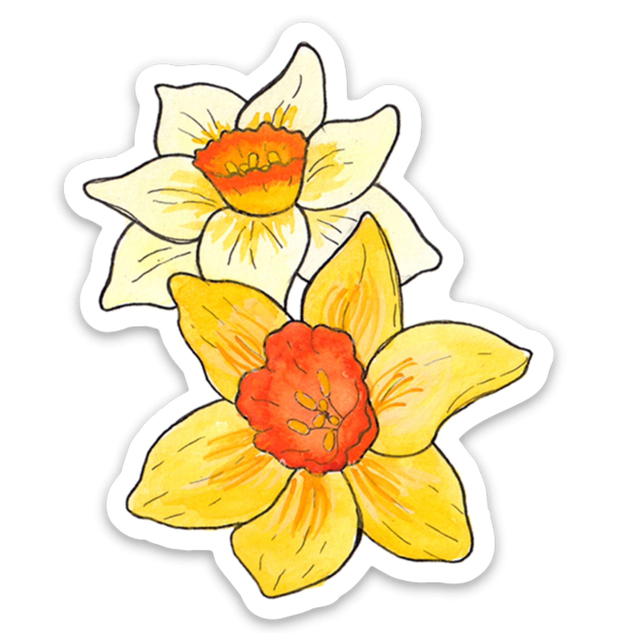 Daffodil march birth flower vinyl sticker in 2020 birth