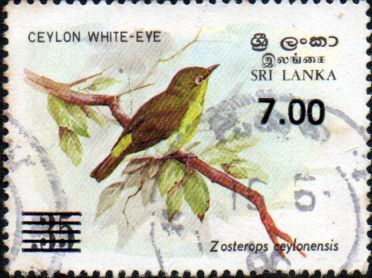 Sri Lanka 1986 Vasak Wall Paintings SG 942 Fine Mint Scott 794 Other Sri Lanka Stamps HERE