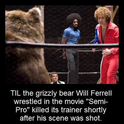 """TIL the grizzly bear Will Ferrell wrestled in the movie """"Semi-Pro"""" killed its trainer shortly after his scene was shot."""