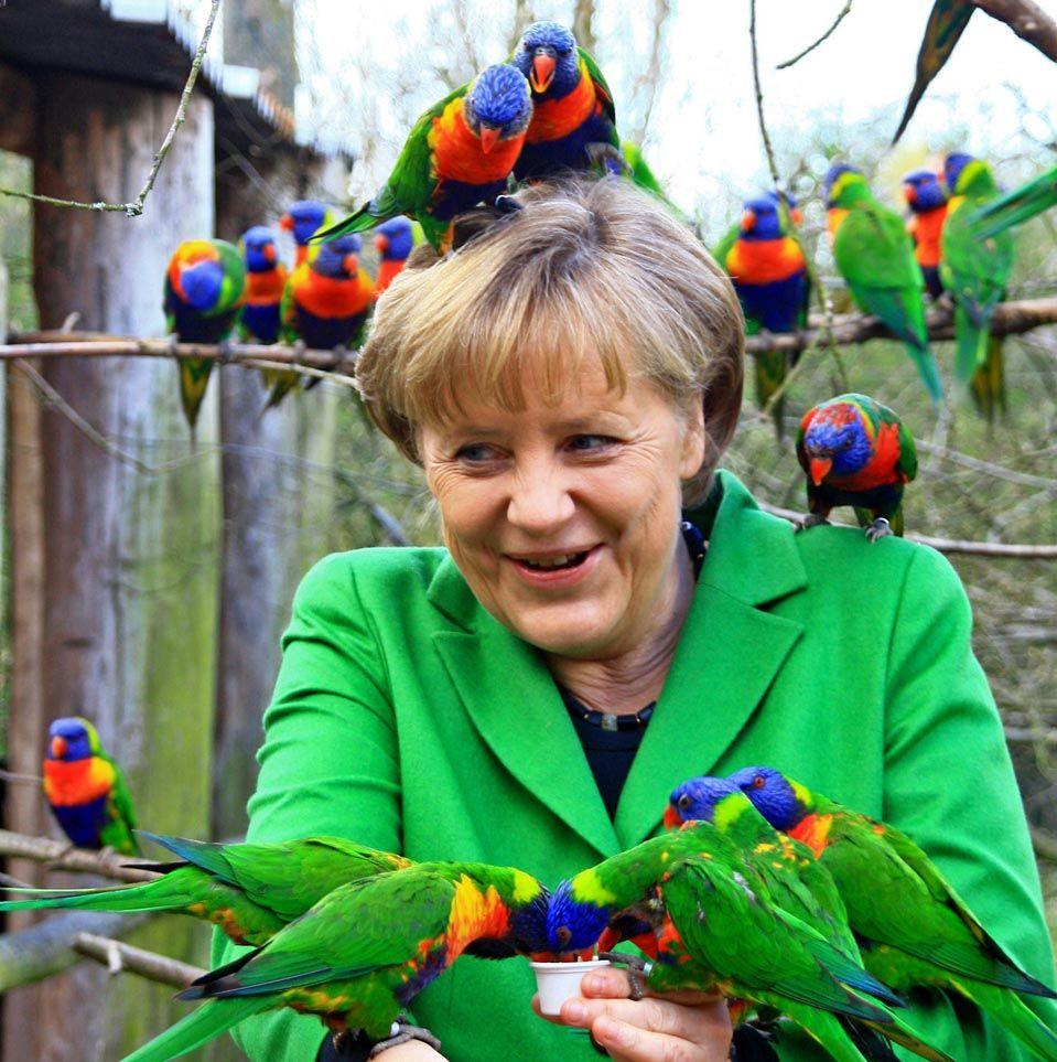 Merkel tiene pájaros en la cabeza