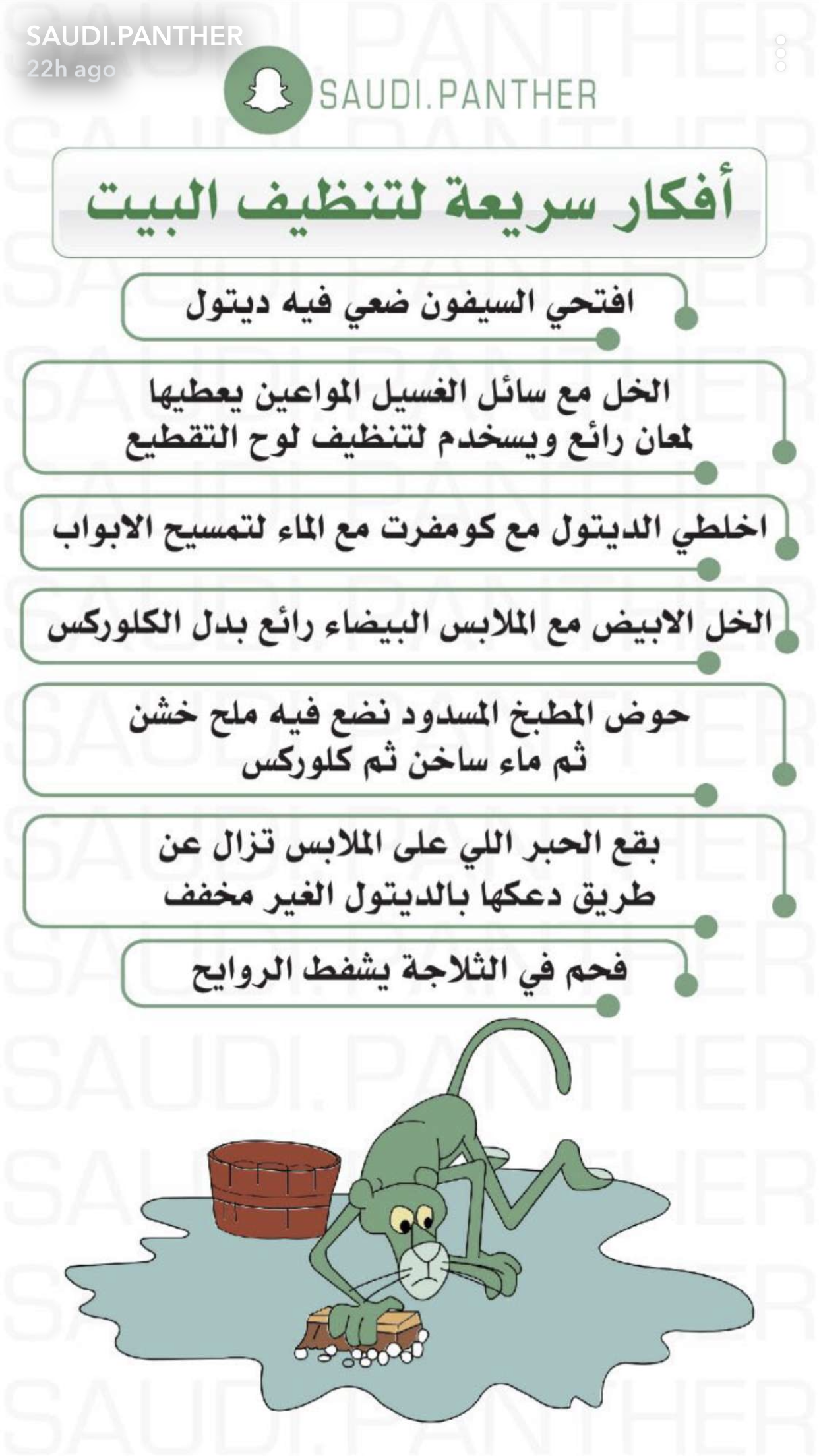 Pin By Saida Yusef On S P House Cleaning Checklist Clean House House Cleaning Tips