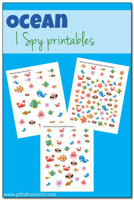 Free Ocean I Spy printables with three levels of difficulty. Help your child with visual discrimination, counting, and naming ocean animals! || Gift of Curiosity