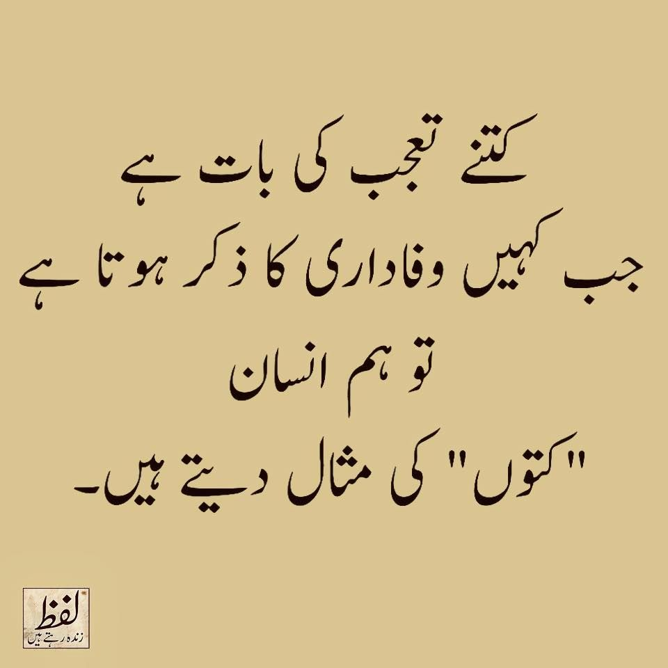 Quotes In Urdu Fascinating Pinwaris On Intkhab E Sukhun  Pinterest  Urdu Quotes Urdu