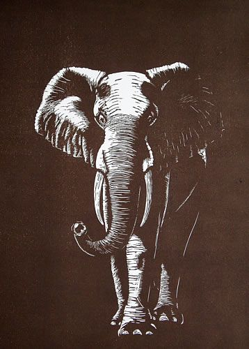 Elephant Mary Collett Linocut Linocut Prints Linocut