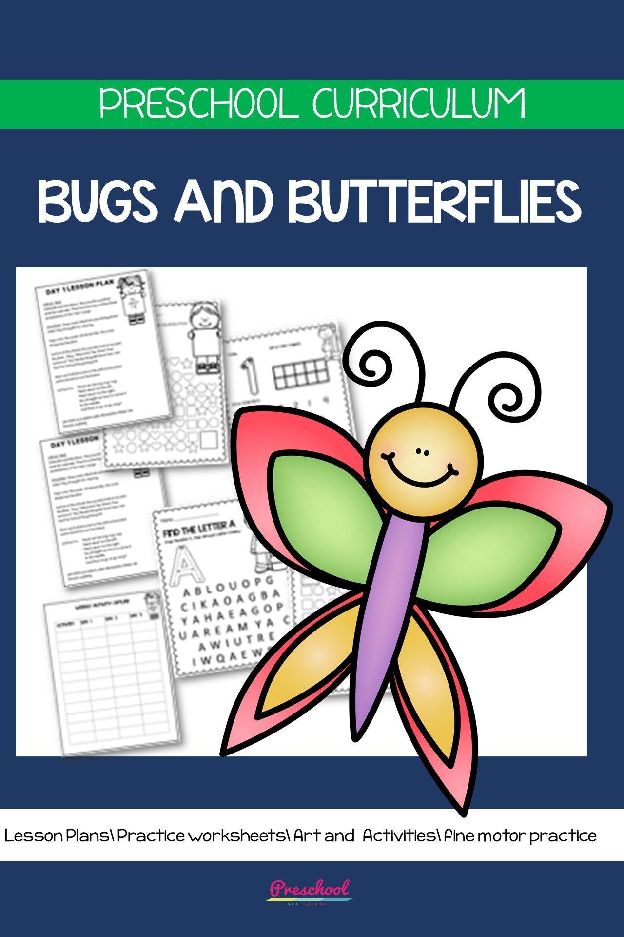 Bugs And Butterflies Preschool Theme In