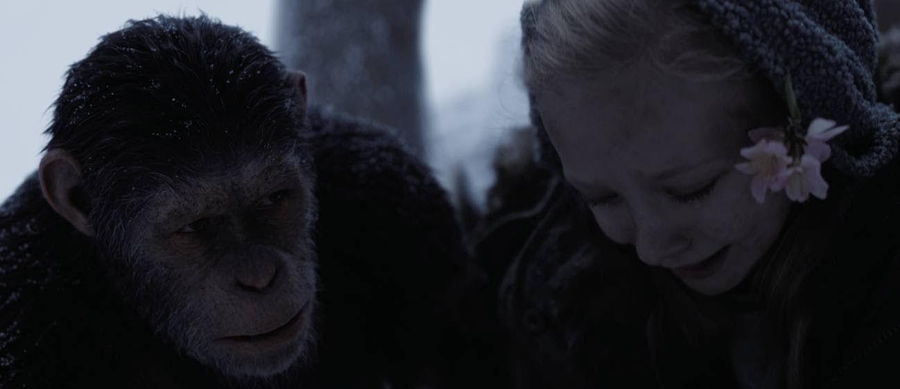 20th Century Fox, casa distribuidora de War for the Planet of the Apes, se asoció con el Instituto Jane Goodall con el propósito de ayudar a brindar atención a los chimpancés rescatados - http://j.mp/2sg4IzO