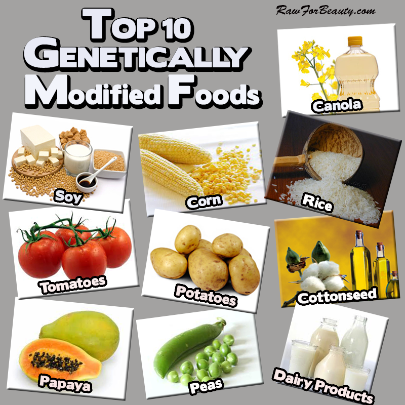 Genetically Modified Foods A New Trend Genetically Modified
