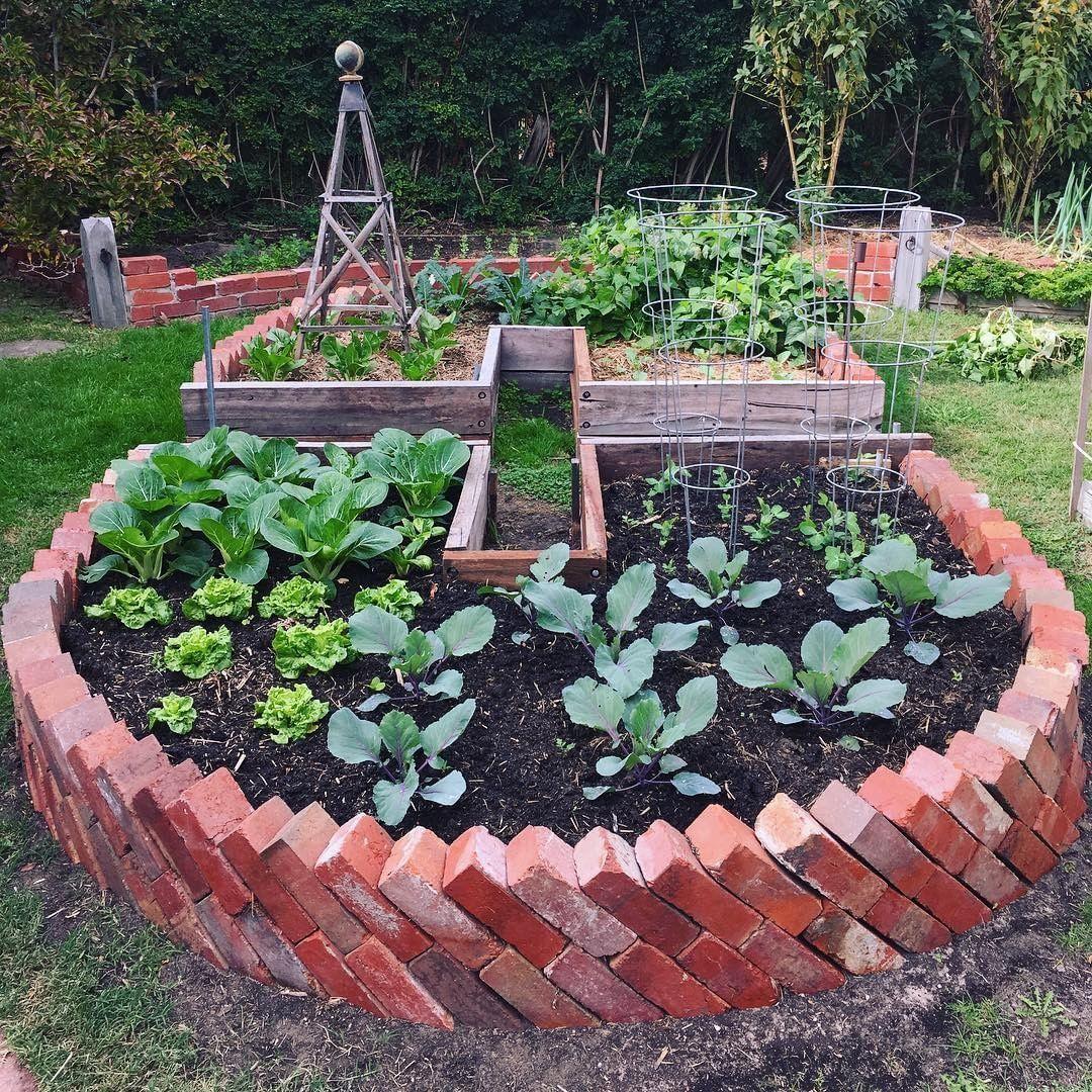 """Photo of Bli voksen på Instagram: """"Mye vekst skjer i @ suburban.existence's to nøkkelhullsenger! #getgrowing #plantyourplate """""""