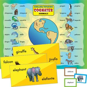 English Spanish Cognates Animals Learning Spanish Cognates Spanish Cognates