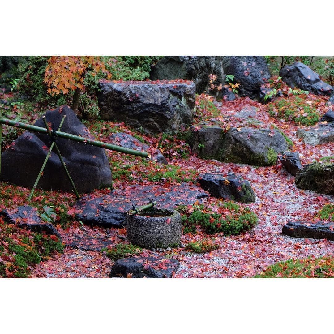2014 autumn in Kyoto🍁#Kyoto #京都 #永観堂 #fujifilm