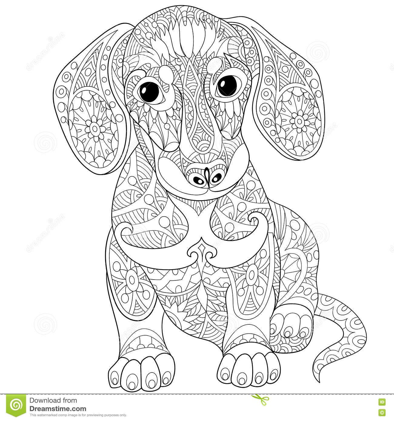 Zentangle Stylized Dachshund Dog Download From Over 51 Million High Quality Stock Photos Images Ve Dog Coloring Page Dachshund Colors Animal Coloring Pages