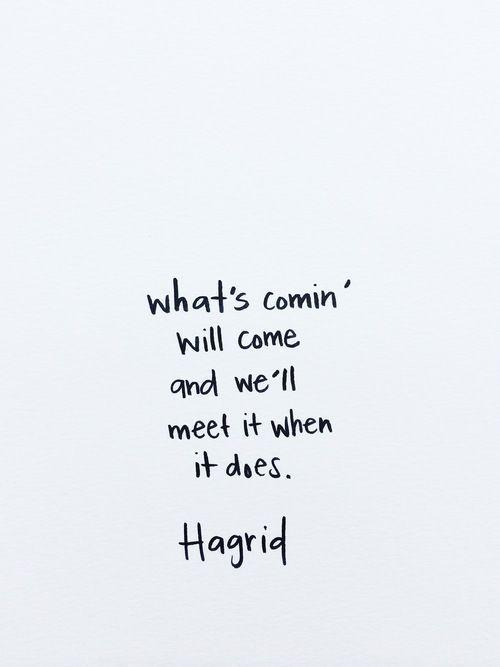 Life Is Like A Box Of Chocolates Zitate Zitate Aus Harry Potter Spruche