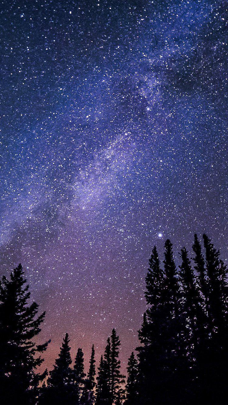 nl59nightstarryskyaurorawinter Night sky wallpaper