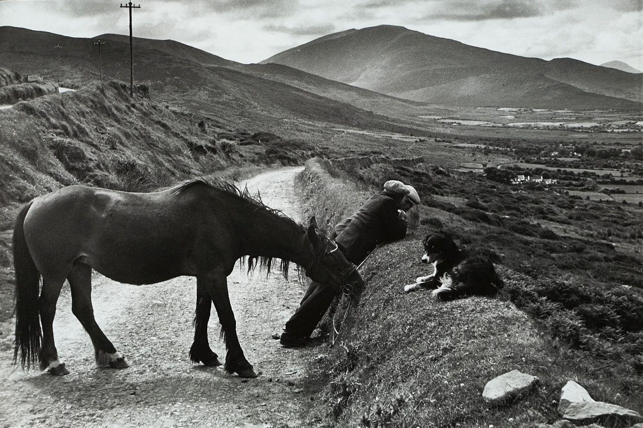 Pin von Christin K auf Henry Cartier Bresson  Schwarz Tiere und Henri cartier bresson