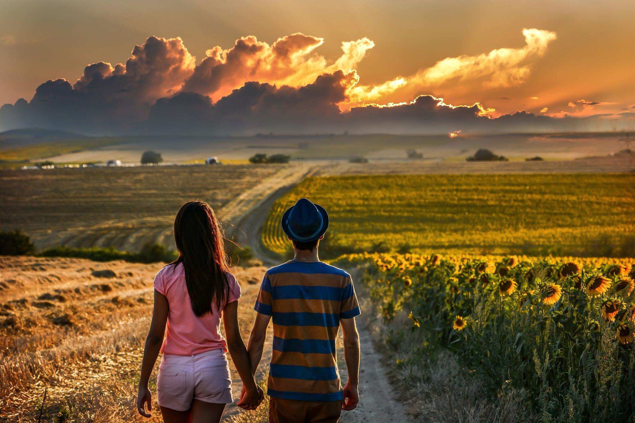 Love by Vildan BÜYÜKKAYA on 500px Sunset, Sunflower