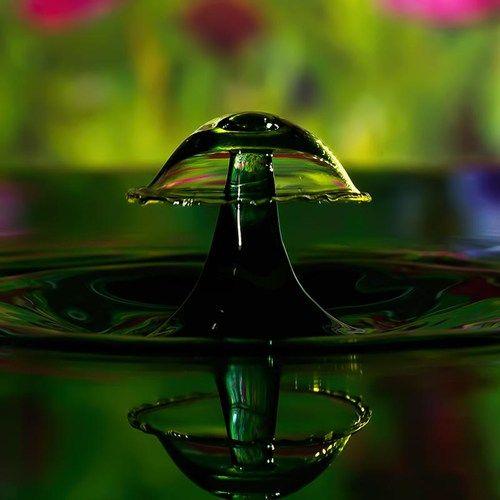 Gota de agua en forma de hongo con reflejo -  baomoi.com