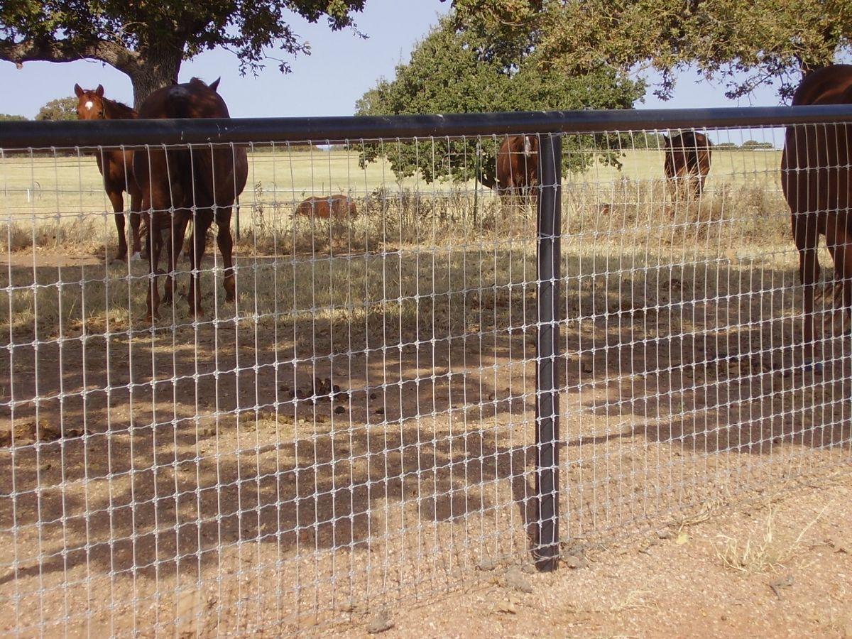 attractive pipe fencing Google Search blanco Pinterest