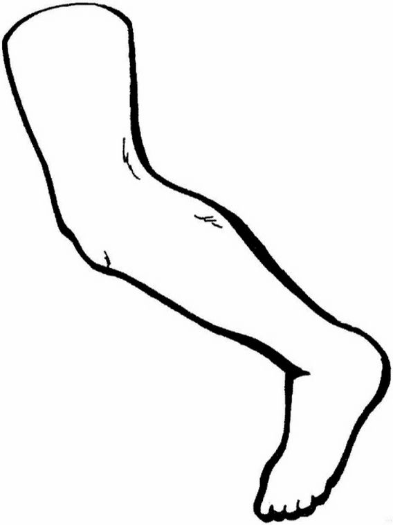 Printable worksheets for kids. Human body coloring pages 15 ...