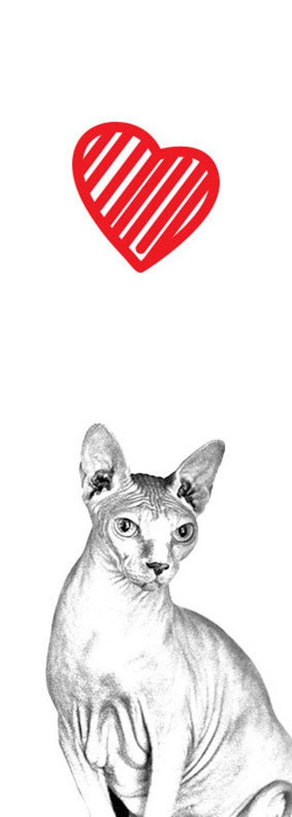 Sphynx cat - Metal bottle opener with a magnet for the fridge with the image of a cat. Collection