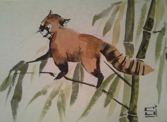 Red panda. aquarel/watercolor, ink, 14×17cm, 20$