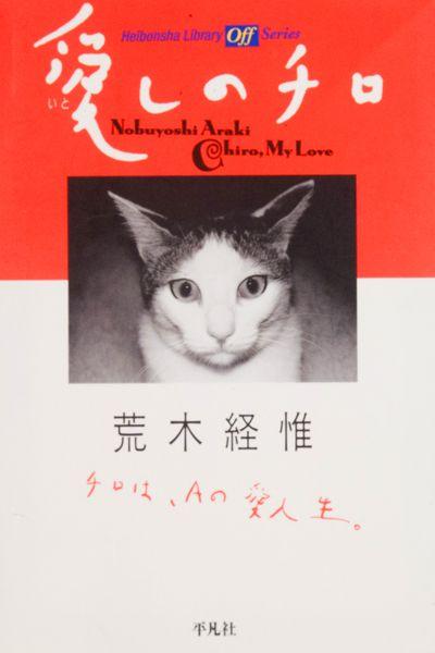 Araki, Chiro My Love (Tokyo: Heibonsha, 1991)