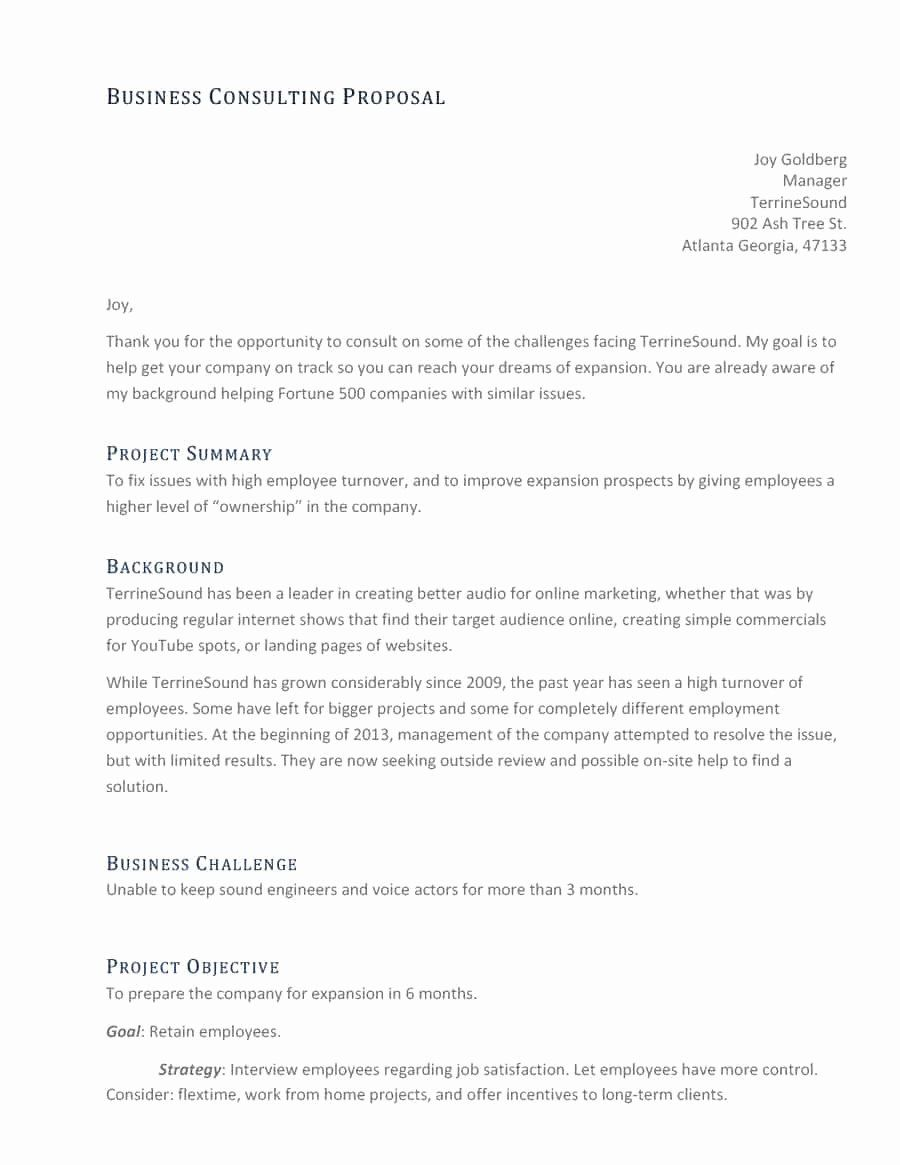 Consulting Proposal Sample Pdf Inspirational 39 Best