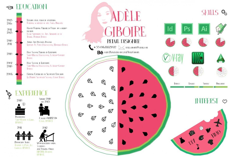 adele giboire resume infographic